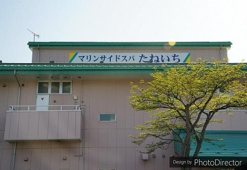 DSC01260-1.jpg