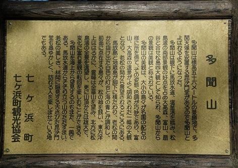 DSC07508.jpg