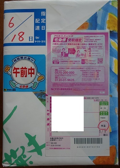 DSC08989.jpg