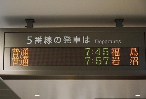 DSC00558-1.jpg